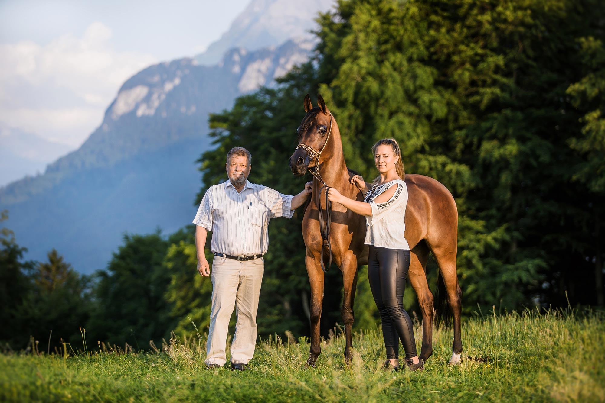 HB Angelina - MW Arabians - Martin Wanzenried