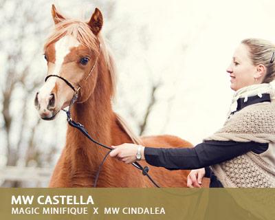 MW Castella